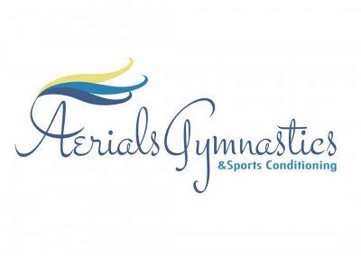 Arials Gymnastics